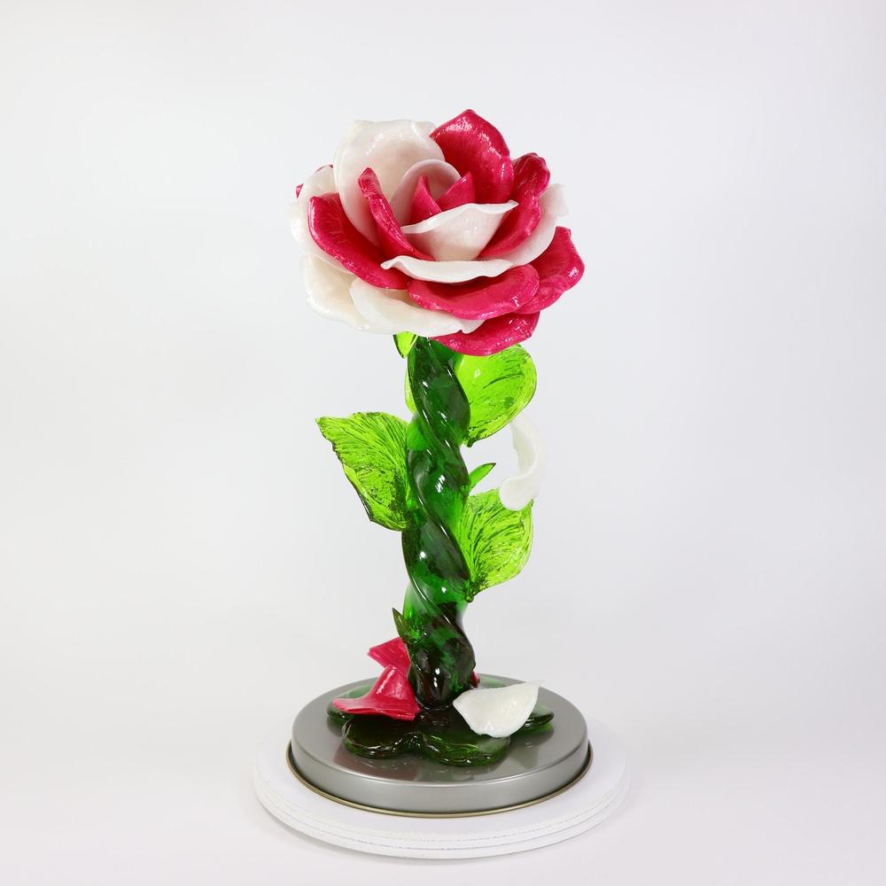 Карамельная Роза большая малиново-белая в тубе