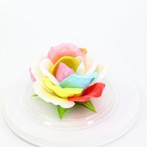 Карамельная Роза маленькая семицветик в полусфере