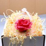 Карамельная Роза маленькая малиновая в полусфере